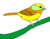 Disegno Uccellino  pitturato su gigi