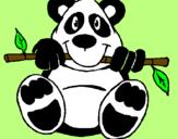 Disegno Orso panda  pitturato su yin e yang