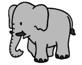 Disegno Elefante bebè  pitturato su GIULIA