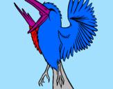 Disegno Uccello ribelle  pitturato su laura 3 anni