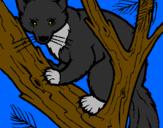 Disegno Martora europea su un albero  pitturato su ANDREA