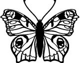 Disegno Farfalla pitturato su albero