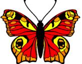 Disegno Farfalla pitturato su giova