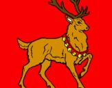 Disegno Cervo  pitturato su Virginie