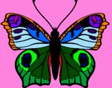 Disegno Farfalla pitturato su Marti