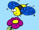 Disegno Vespa con un fiore  pitturato su francesca p.