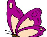 Disegno Farfalla  pitturato su farfallina