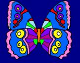Disegno Farfalla  pitturato su maya bibi