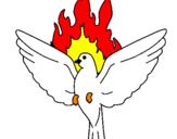 Disegno Colomba della Pentecoste  pitturato su davide
