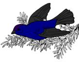 Disegno Rondine  pitturato su rondine