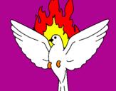 Disegno Colomba della Pentecoste  pitturato su federica