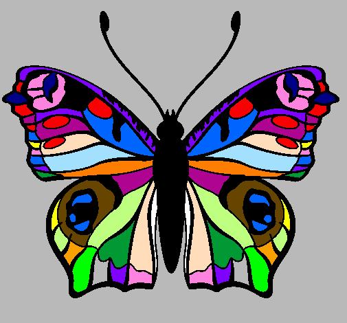 Disegno farfalla colorato da utente non registrato il 05 for Foto farfalle colorate