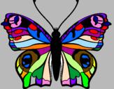 Disegno Farfalla pitturato su la farfalla colorata