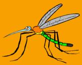 Disegno Zanzara pitturato su Zanzarman!