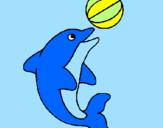 Disegno Delfino con una palla  pitturato su floricientina