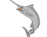 Disegno Pesce spada  pitturato su alebi