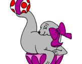 Disegno Foca che gioca con la palla  pitturato su Greta