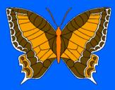 Disegno Farfalla  pitturato su Victtor da silva