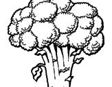 Disegno Broccoli  pitturato su francesca
