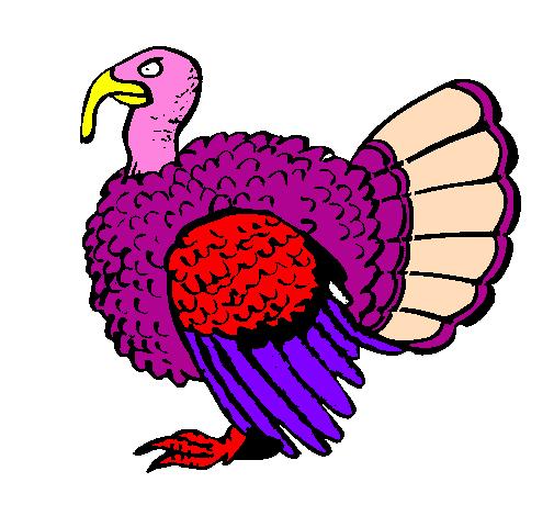 Disegno pavone colorato da utente non registrato il 11 di - Immagini pavone a colori ...