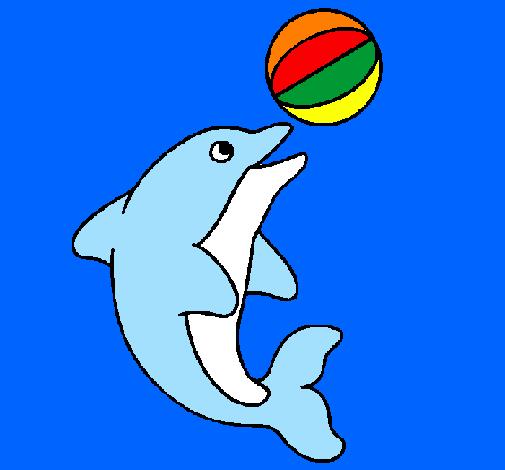 Delfino pesce palla