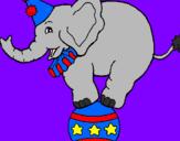 Disegno Elefante sulla palla  pitturato su c
