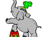 Disegno Elefante  pitturato su antonella99