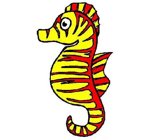 Disegno cavalluccio marino colorato da utente non for Disegni cavallucci marini