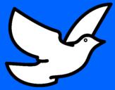 Disegno Colomba della pace  pitturato su chiara
