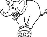 Disegno Elefante sulla palla  pitturato su fabio
