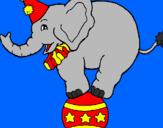 Disegno Elefante sulla palla  pitturato su francy01