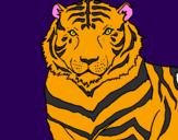 Disegno Tigre pitturato su alessialer