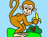 Disegno Scimmietta  pitturato su MATILDA