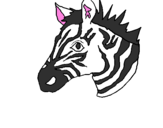 Disegno Zebra II pitturato su pritom
