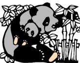 Disegno Mamma panda  pitturato su alessio4