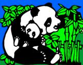 Disegno Mamma panda  pitturato su Fra
