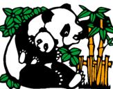 Disegno Mamma panda  pitturato su pasqualona