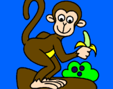 Disegno Scimmietta  pitturato su IACOPOBRUNI
