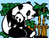 Disegno Mamma panda  pitturato su  zairaa