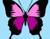 Disegno Farfalla con le ali nere pitturato su leila
