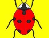 Disegno Coccinella pitturato su lorenzo