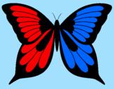 Disegno Farfalla 8 pitturato su stefania