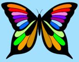 Disegno Farfalla 8 pitturato su martina canni