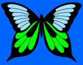 Disegno Farfalla 8 pitturato su carlottina