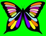 Disegno Farfalla 8 pitturato su sara1