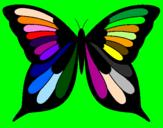 Disegno Farfalla 8 pitturato su Elisa
