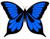 Disegno Farfalla 8 pitturato su sara
