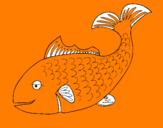 Disegno Pesce 3 pitturato su uyhuyutytyhnmkmiu8jjmkk
