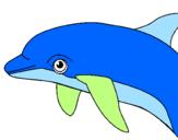 Disegno Delfino  pitturato su giulia