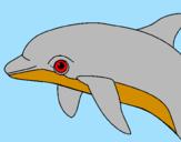 Disegno Delfino  pitturato su sofia